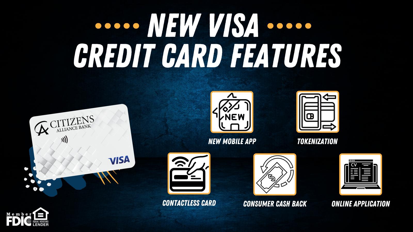 Visa Credit Card Graphic